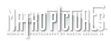 Matko Pictures
